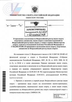 Компьютерный спорт официально признан спортом в России